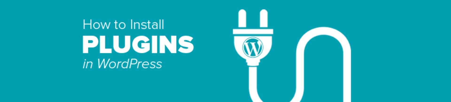 instll-pluginwordpress-2